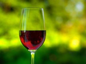 Małopolskie miasto chce stać się centrum winiarskiej turystyki. To nawiązanie do książęcej tradycji