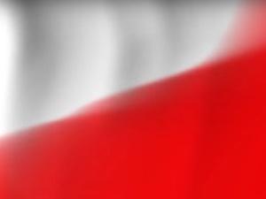 Krysztopa: Tak naprawdę bijemy się o niepodległość