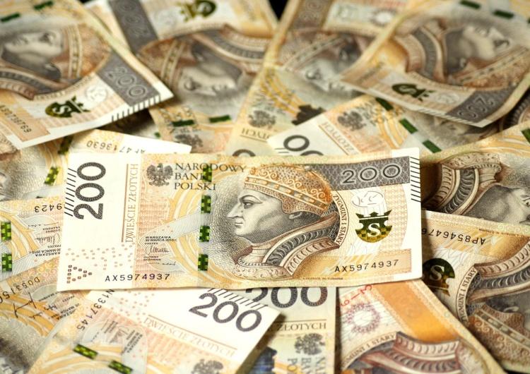 _Alicja_ Przyjdzie zacisnąć pasa? PKW odrzuciła sprawozdania finansowe Konfederacji i Zielonych