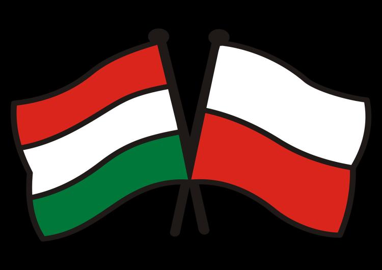 [Wideo] Czy sprawy przeciw Polsce i Węgrom o naruszeniu praworządności mogą być połączone?