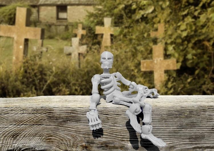 """[Felieton """"TS""""] Cezary Krysztopa: Wszyscy umarniemy"""