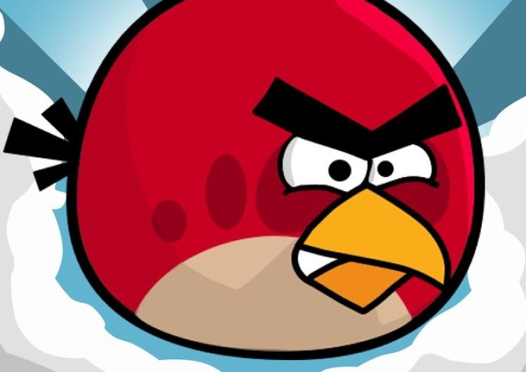 """[Felieton """"TS""""] Cezary Krysztopa: Ptaki wściekłe, ale nie bez powodu"""
