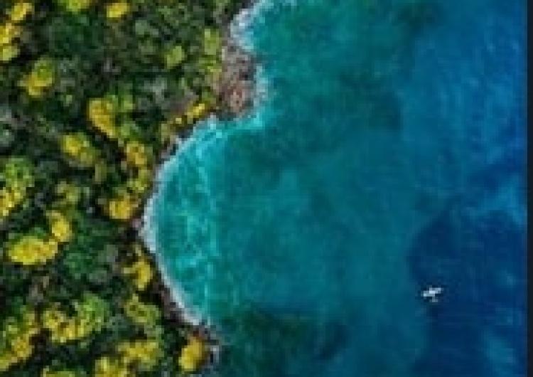 """[video] Zobacz zwiastun filmu """"Wyspa Fantazji"""""""