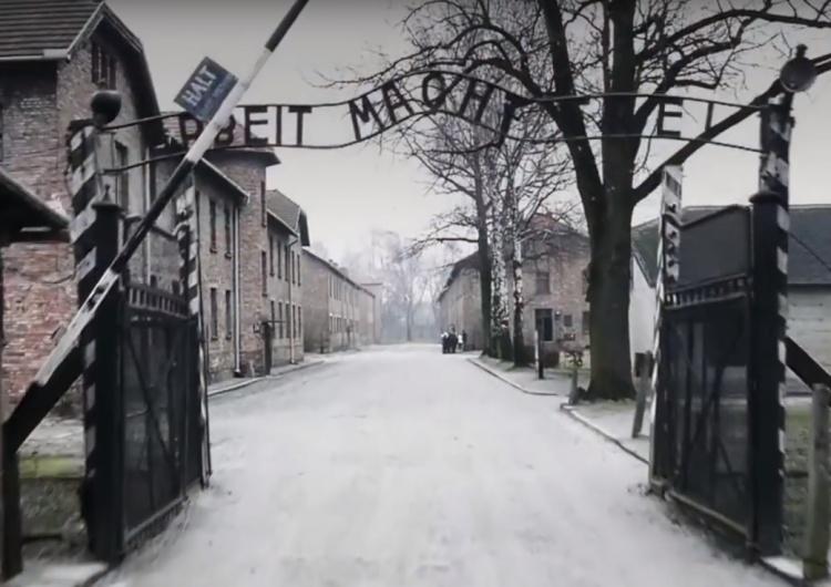"""""""Droga redakcjo, jestem byłą więźniarką KL Auschwitz. Zostałam zaproszona na spotkanie z Merkel..."""""""