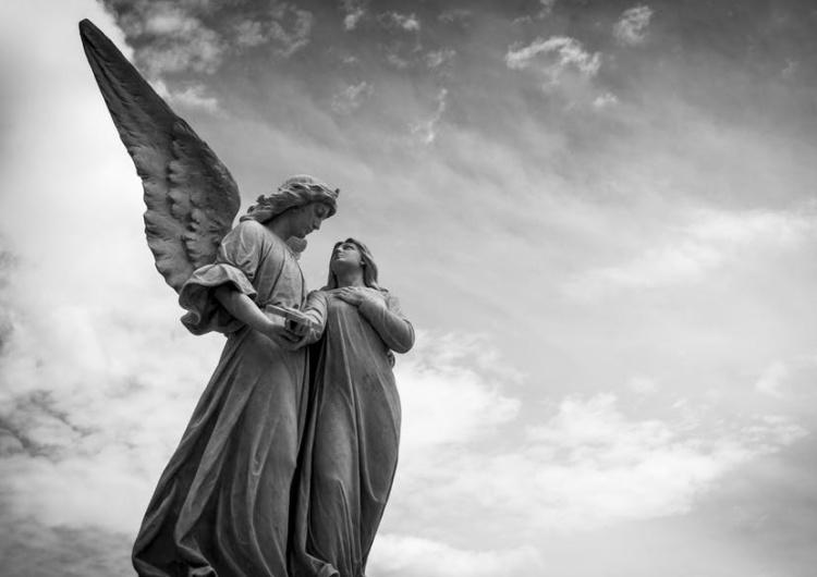 [video] Ewangelia na Uroczystość Niepokalanego Poczęcia Maryi/II Niedzielę Adwentu z komentarzem