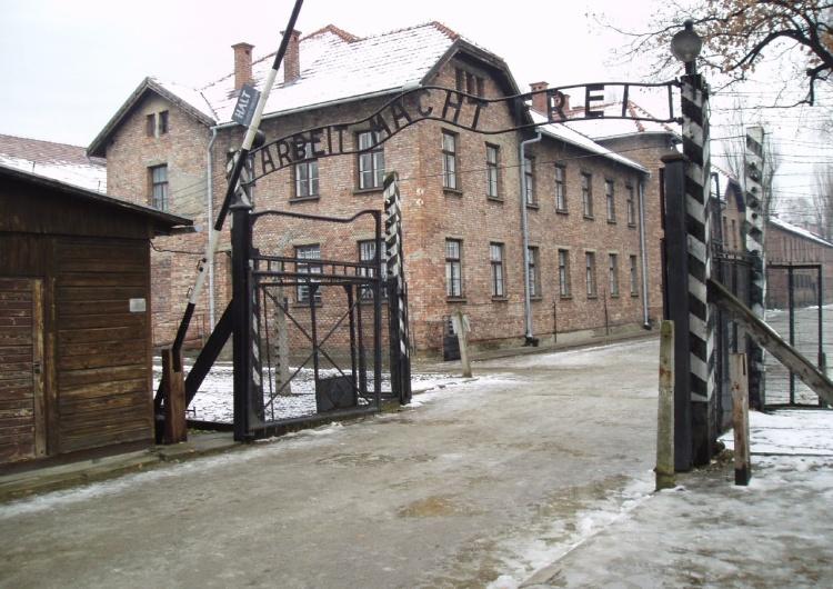 Wikimedia Pamięć o Auschwitz jest ważna dla 94% Polaków