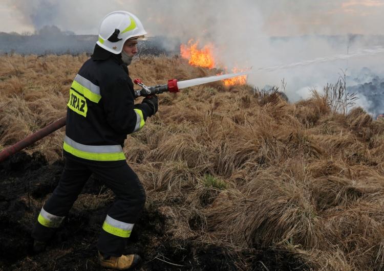 Pożar w Biebrzańskim Parku Narodowym. Szef MON opublikował zdjęcia ze śmigłowca. Ogromna skalazniszczeń