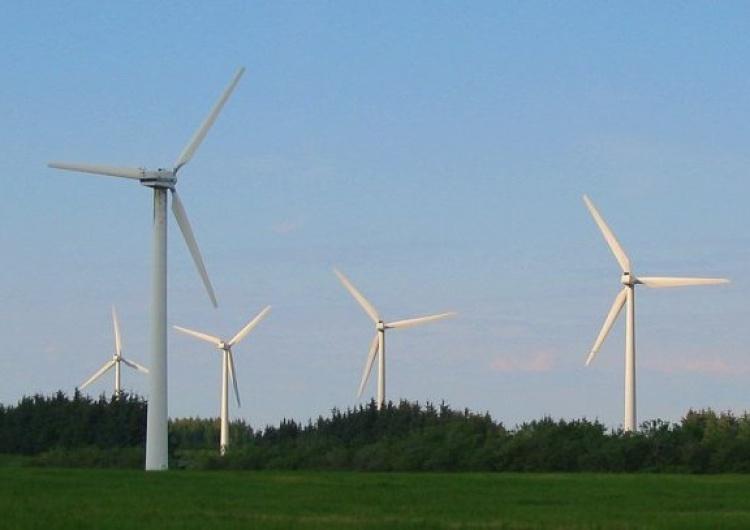 Norwescy ekolodzy: Niemcy nie chcą turbin wiatrowych w pobliżu swych domostw, więc budują je za granicą