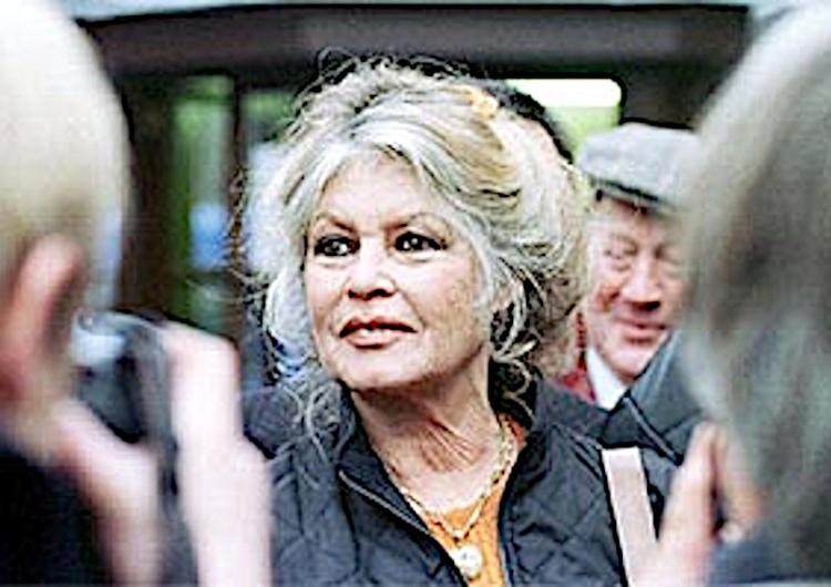 Brigitte Bardot ma dosyć : Rządzą tchórze! Francję najechała banda obcych łajdaków. Mam ochotę ją opuścić