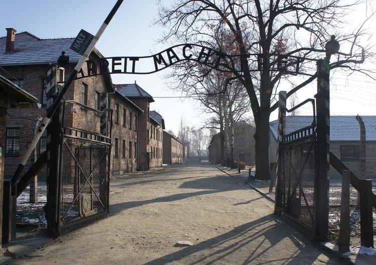 """A Niemcy swoje. Tym razem piszą o """"200 Żydach w I Transporcie do Auschwitz"""""""